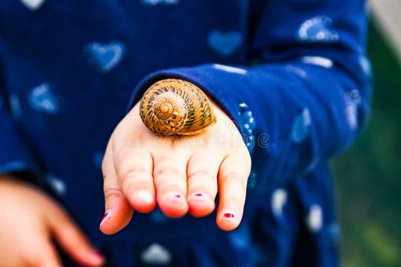 Caracol en una mano inocente del ` s del niño fotos de archivo libres de regalías
