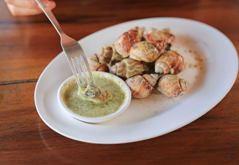 Caracol grelhado delicioso de babylon da espiral com molho de pimentão na forquilha pronto para comer O marisco tailand?s famoso  fotografia de stock