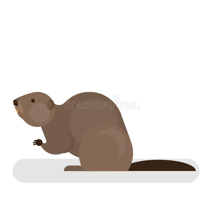 Caractère de castor Animal mammifère de Brown Forêt et faune illustration libre de droits