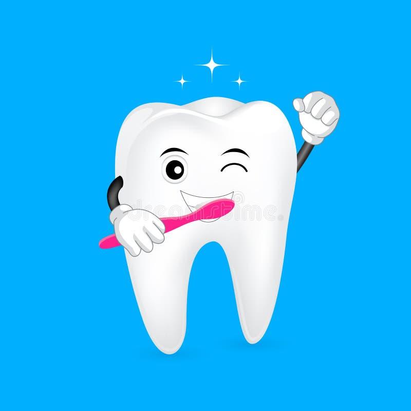 Caractère mignon de dent de bande dessinée tenant la brosse à dents illustration stock