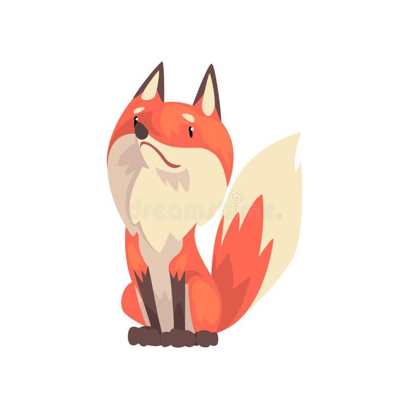 Caractère se reposant mignon de Fox rouge, Front View Cartoon Vector Illustration illustration stock