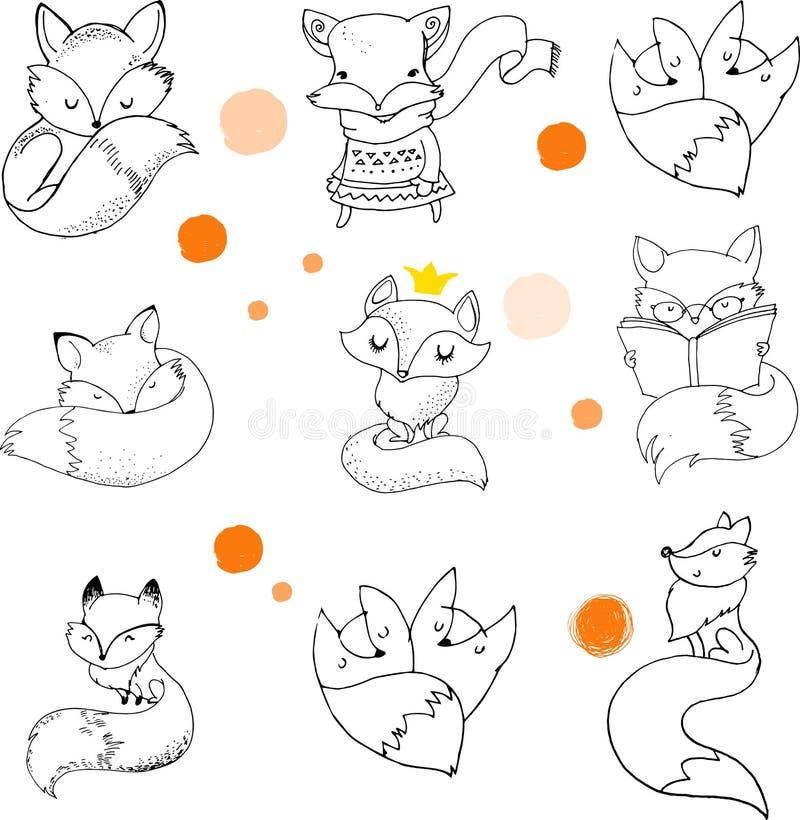 Caractères de Fox, illustrations mignonnes et belles illustration libre de droits