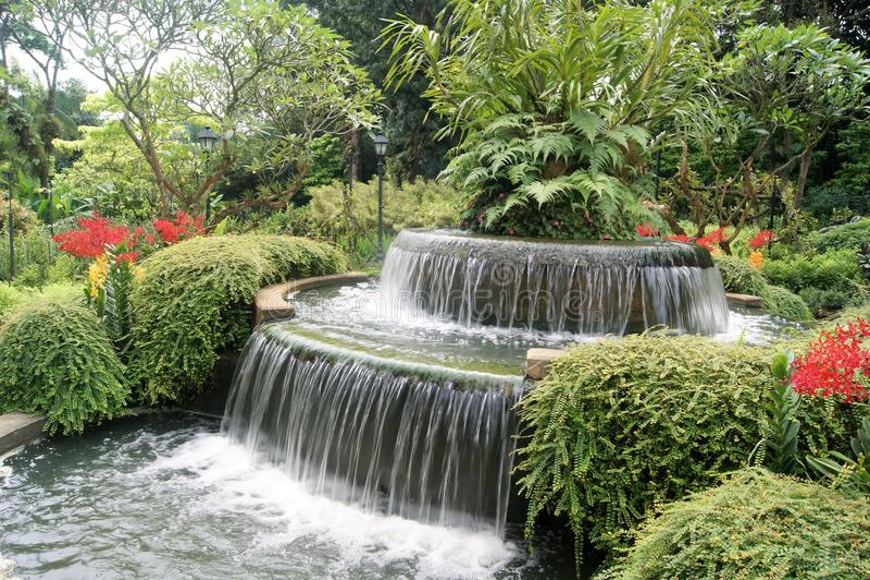 Característica bonita da cachoeira no jardim botânico de Singapura fotografia de stock