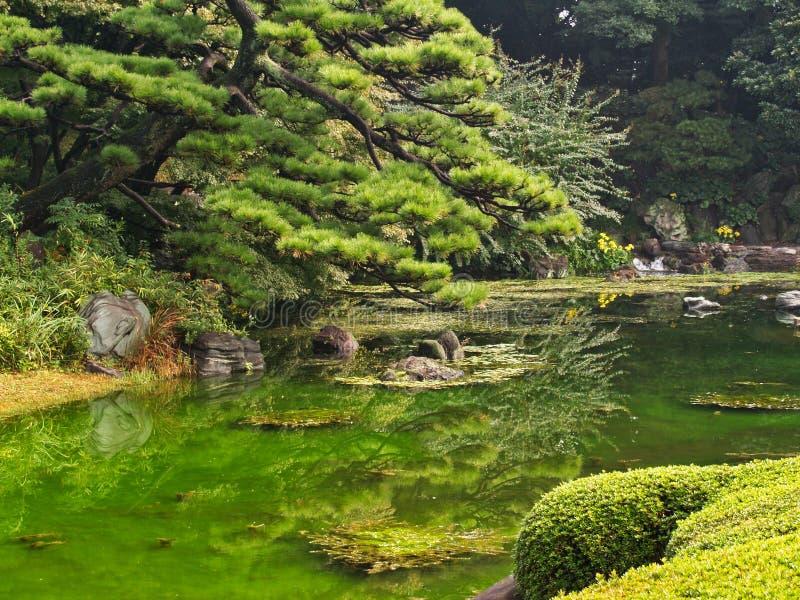 Característica formal da água, jardins imperiais do palácio, Tóquio, Japão foto de stock