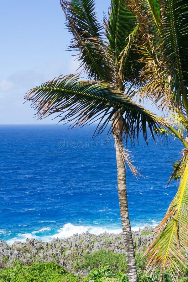 Característica litoral áspera e irregular do coral ao longo dos coas de Togo Chasm fotografia de stock