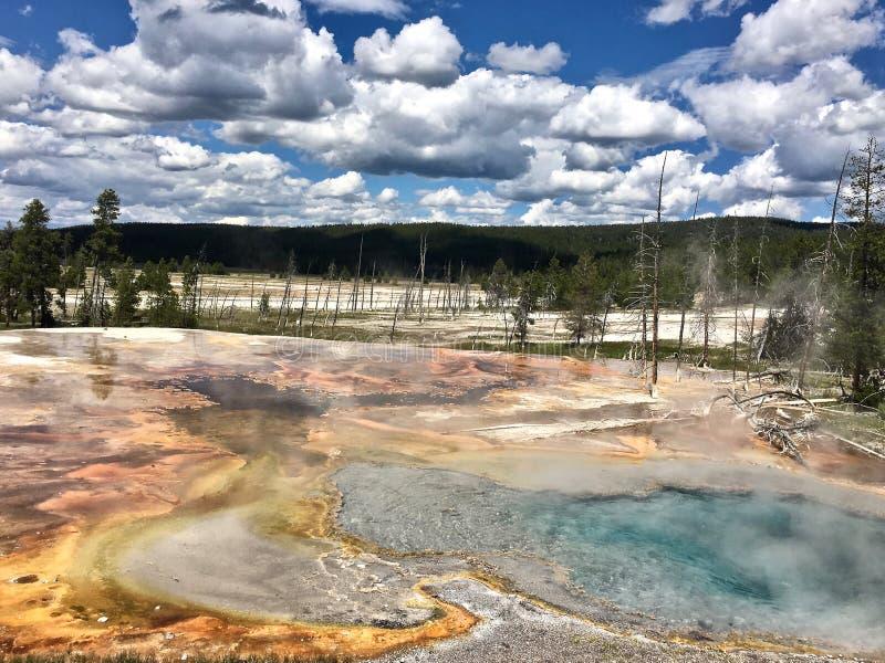 Características termales del parque nacional de Yellowstone de géiseres fotos de archivo