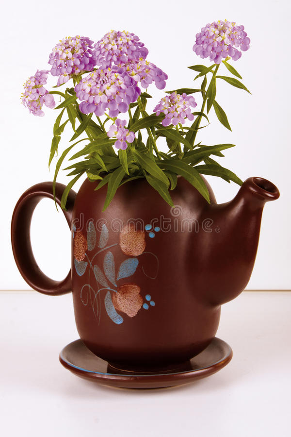 Carafe with Flower. Brown designed Carafe with violet Flower stock images