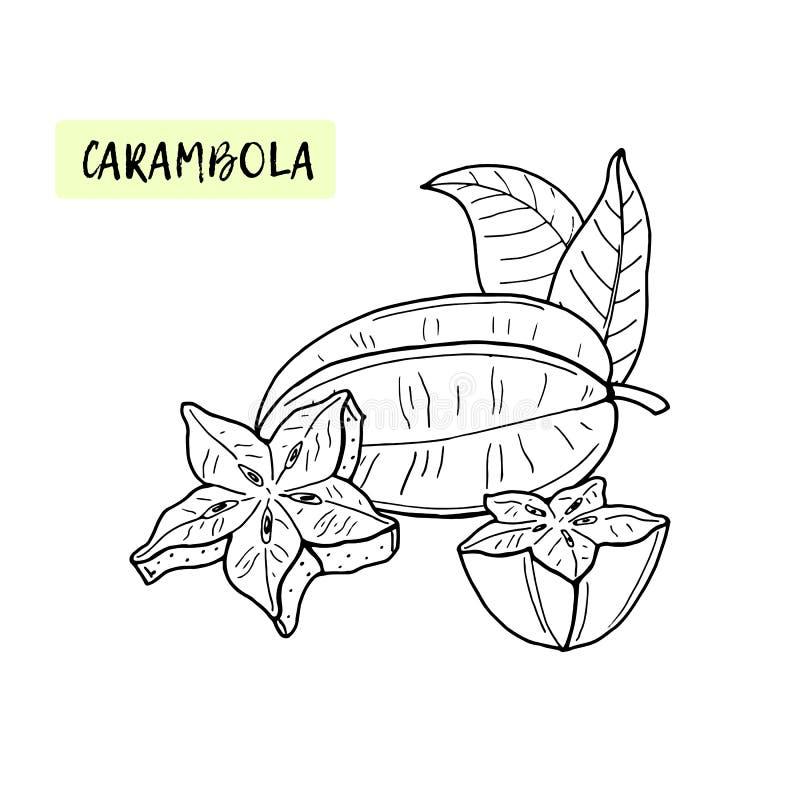 Carambola eller Starfruit F?rgl?ggningbok f?r ungar Tropisk frukt och stycken på vit bakgrund Sommarvektor royaltyfri illustrationer