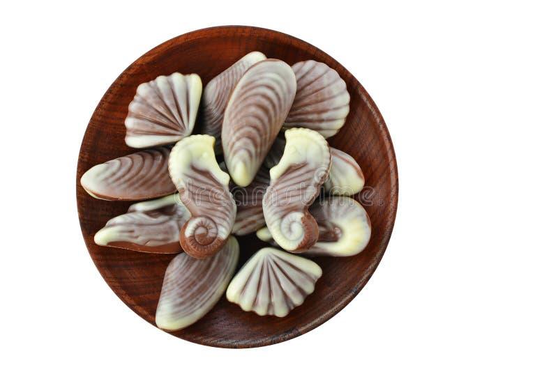 Caramelle di cioccolato, conchiglia e tartufi dell'ippocampo sul piatto di legno isolato fotografia stock