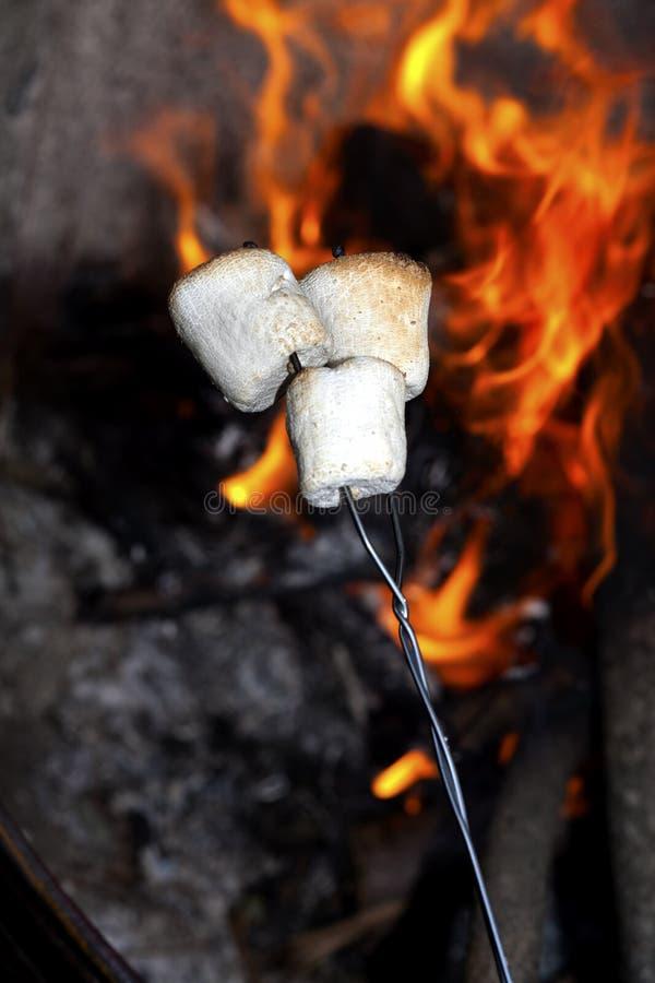 Caramelle gommosa e molle di torrefazione. fotografia stock