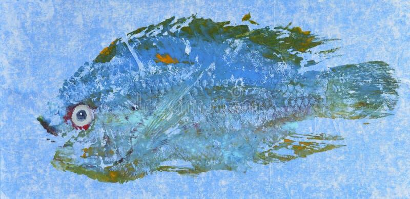 Caranga azul mesma fotos de stock royalty free