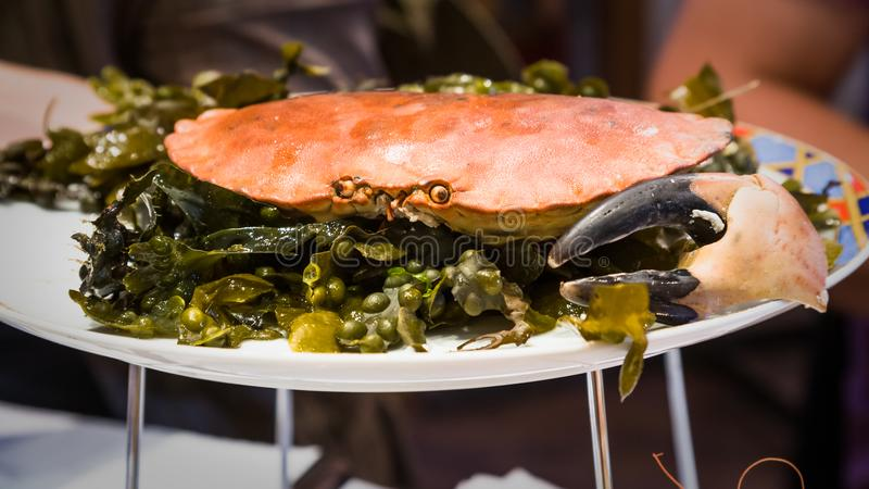 caranguejo atlântico local na placa no restaurante do marisco fotos de stock royalty free