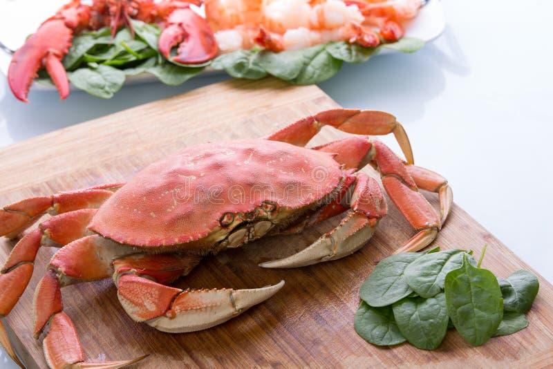 Caranguejo de Prepearing Dungeness e lagosta vermelha fotografia de stock royalty free