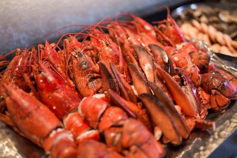 Caranguejo fresco vermelho da lagosta fotografia de stock royalty free
