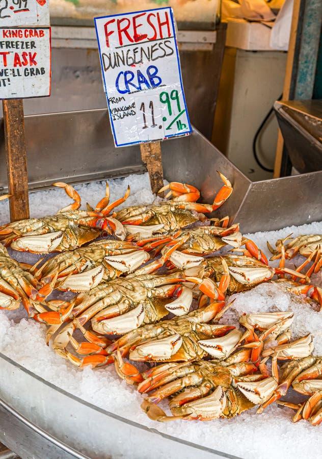 Caranguejos de Dungeness no mercado fotografia de stock