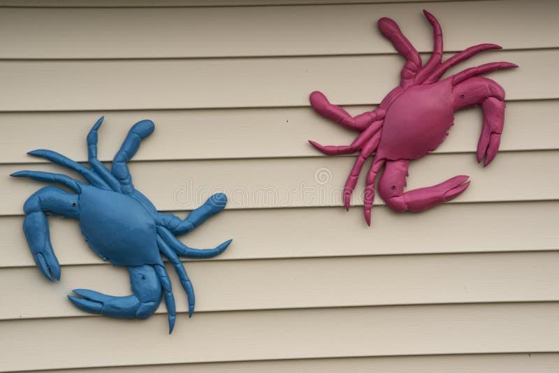 Caranguejos decorativos que penduram em uma vertente imagem de stock