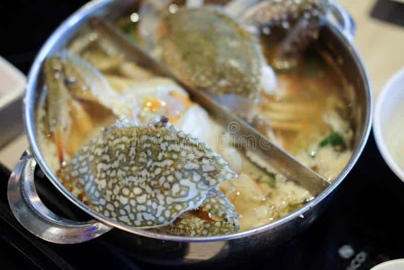 Caranguejos do mar no shabu-shabu do potenciômetro imagens de stock