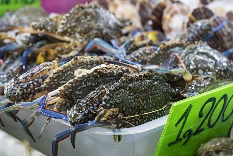 Caranguejos frescos que estão sendo vendidos no mercado de peixes local próximo o mar imagens de stock