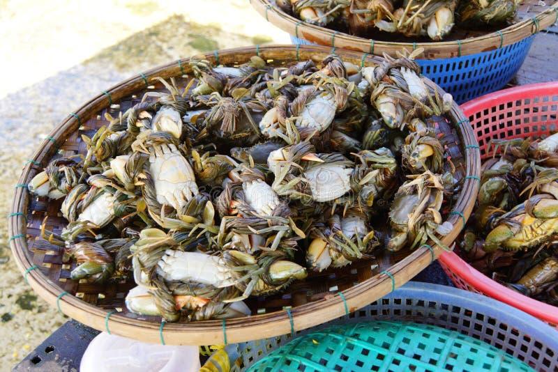 Caranguejos no mercado de Hoi An foto de stock royalty free