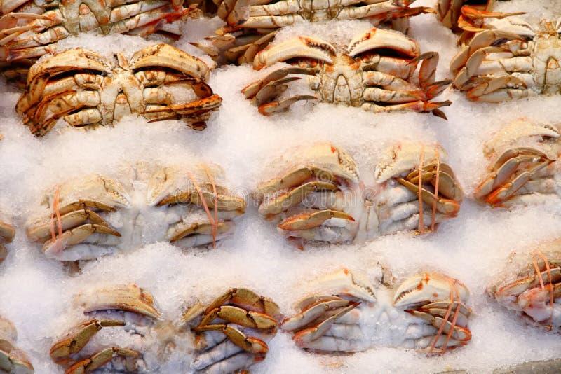 Caranguejos no mercado do gelo em público foto de stock royalty free