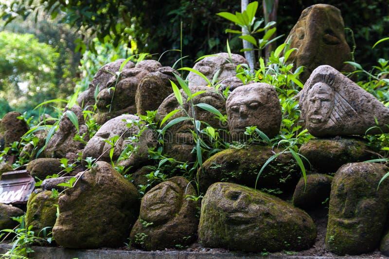 Caras de pedra na floresta imagem de stock