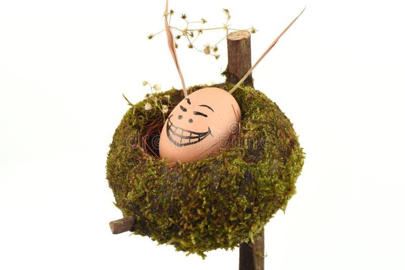 Caras dos ovos ilustração royalty free