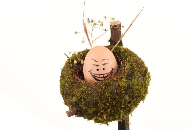 Caras dos ovos ilustração stock