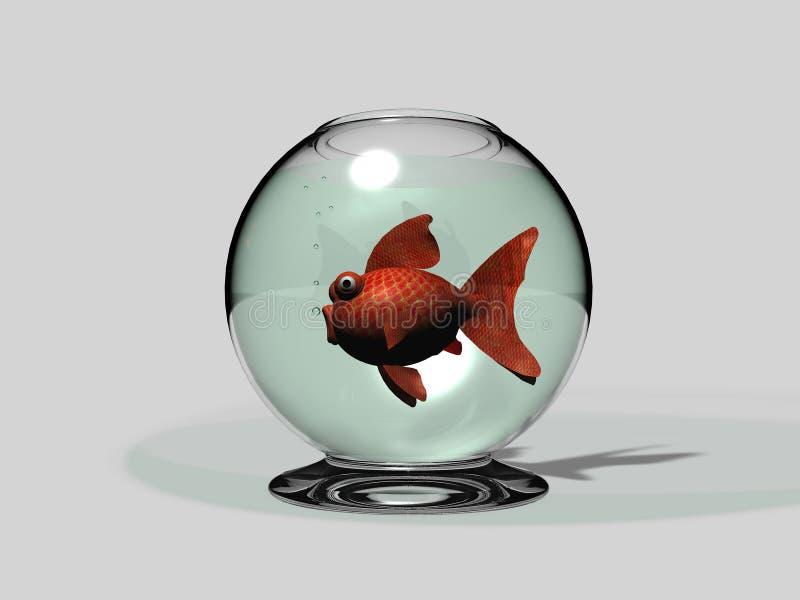 Carassius da bacia e do peixe dourado ilustração do vetor