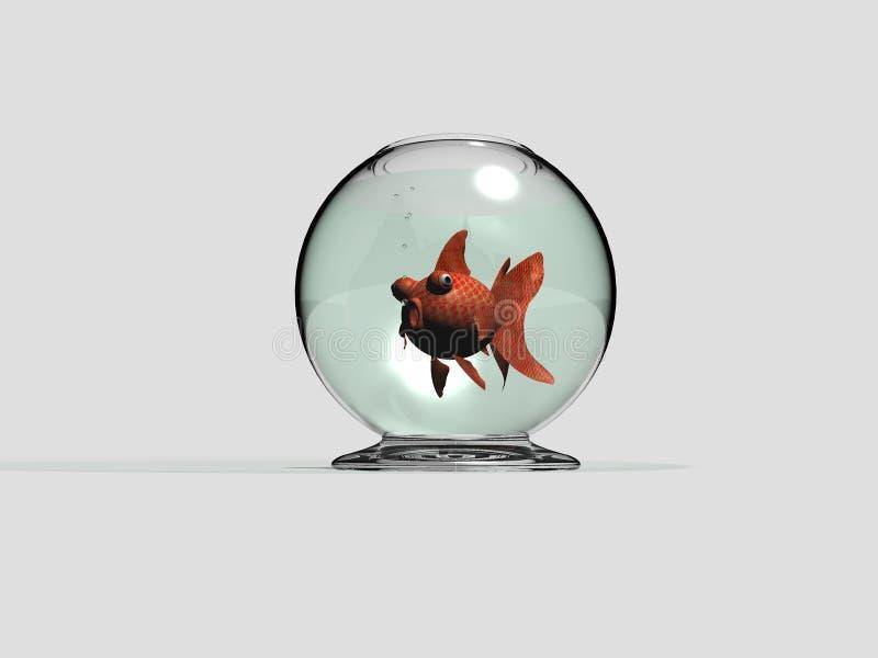 Carassius da bacia e do peixe dourado ilustração royalty free