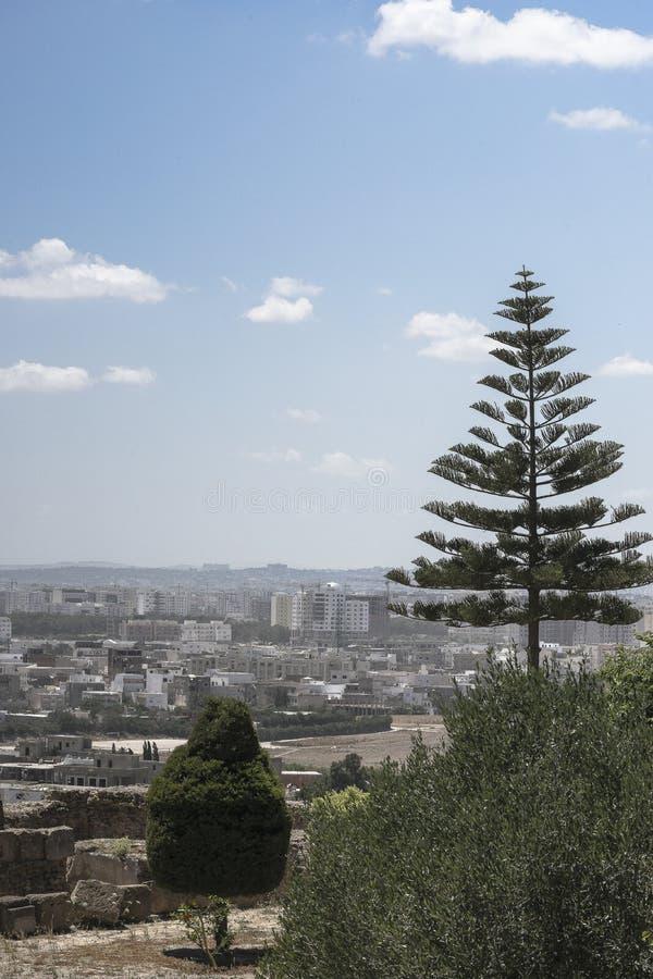 Caratagina в Тунисе стоковое изображение