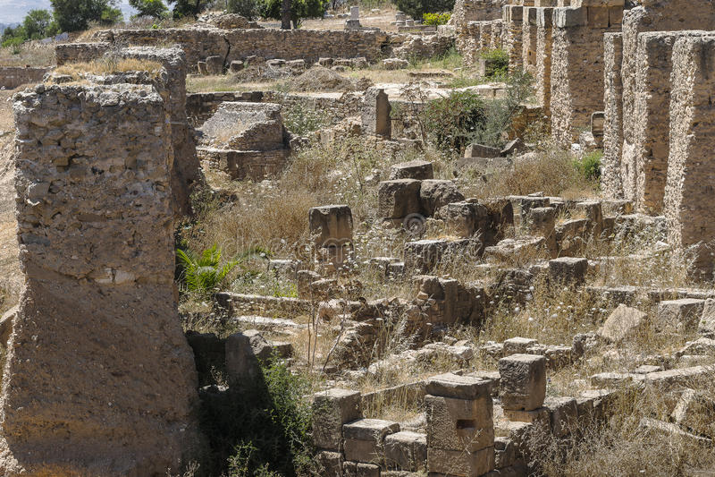 Caratagina in Tunisia royalty free stock photo