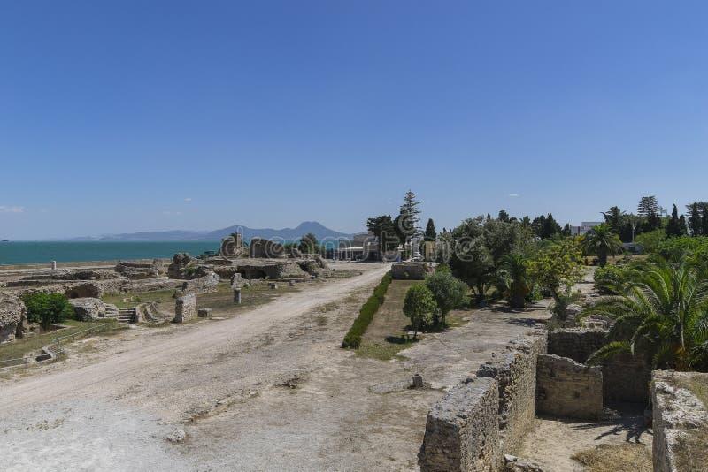Caratagina in Tunisia stock images