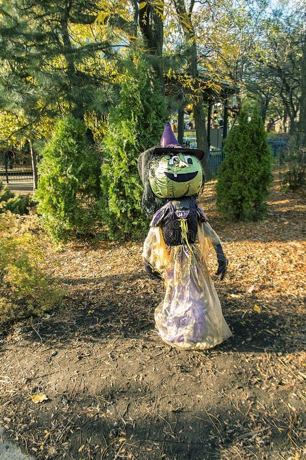 Carattere di Halloween fotografie stock libere da diritti