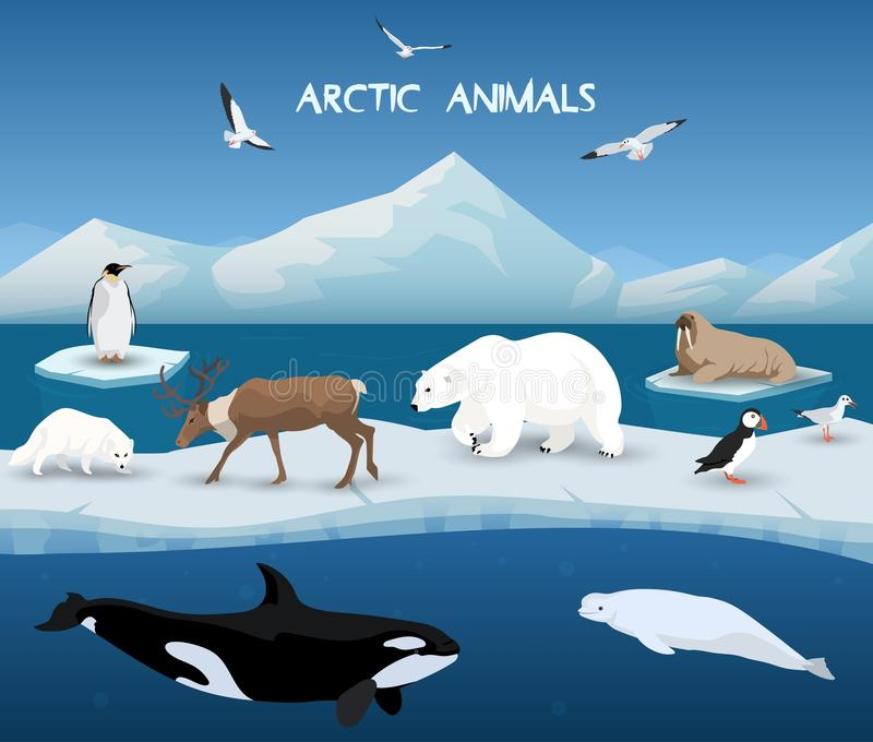 Carattere e fondo artico degli animali, inverno, viaggio della natura e fauna selvatica illustrazione vettoriale