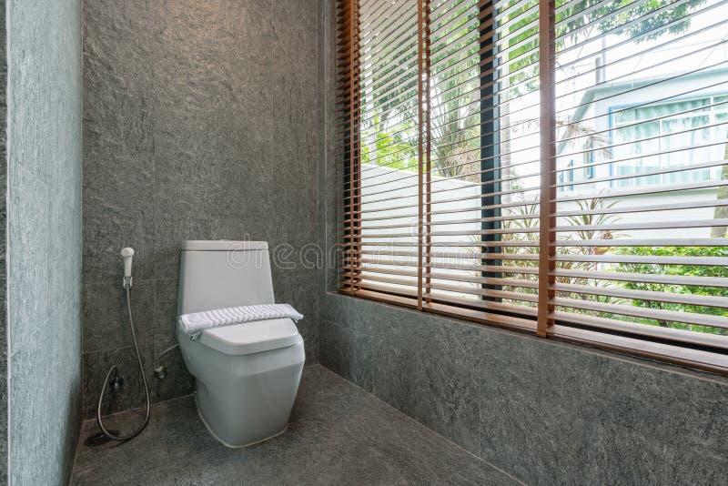 Caratteristiche di lusso del bagno, ciotola di toilette fotografie stock libere da diritti