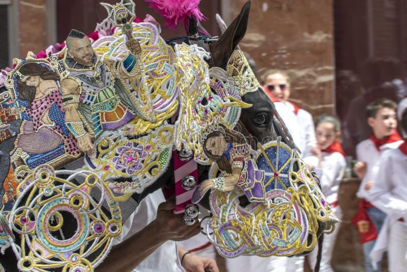 Caravaca de la Cruz, Espa?a, el 2 de mayo de 2019: Caballo que es desfilado en Caballos Del Vino fotos de archivo libres de regalías