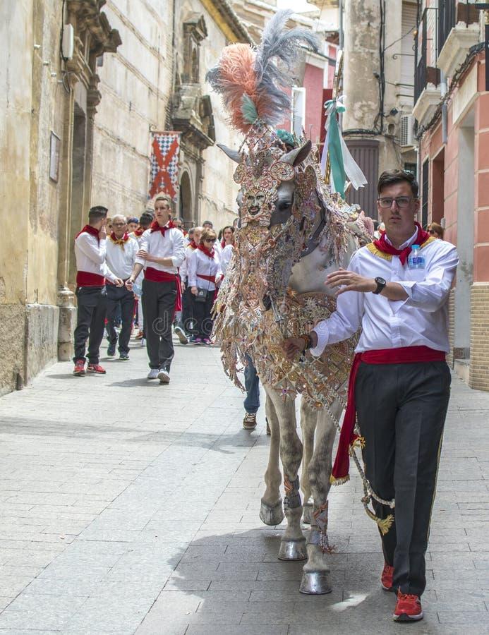 Caravaca de la Cruz, Spanien, am 2. Mai 2019: Pferd, das bei Caballos Del Vino vorgef?hrt wird lizenzfreie stockbilder