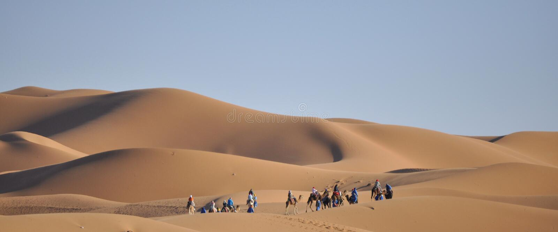 Caravan bij duinen Merzouga, Marokko royalty-vrije stock fotografie