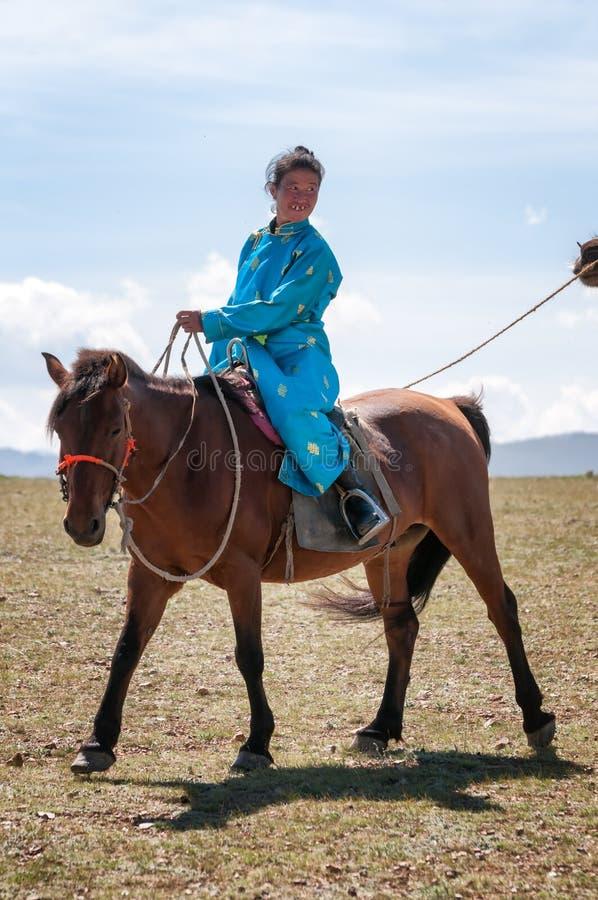 Caravan of camels in Mongolia stock image