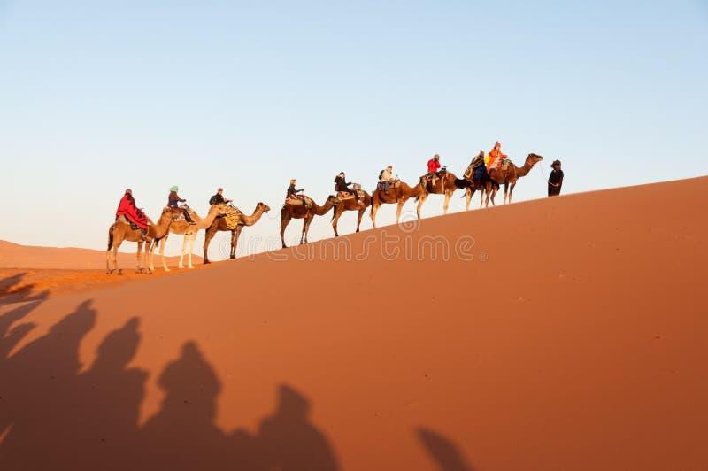 Caravan con i turisti nel deserto del Sahara immagine stock