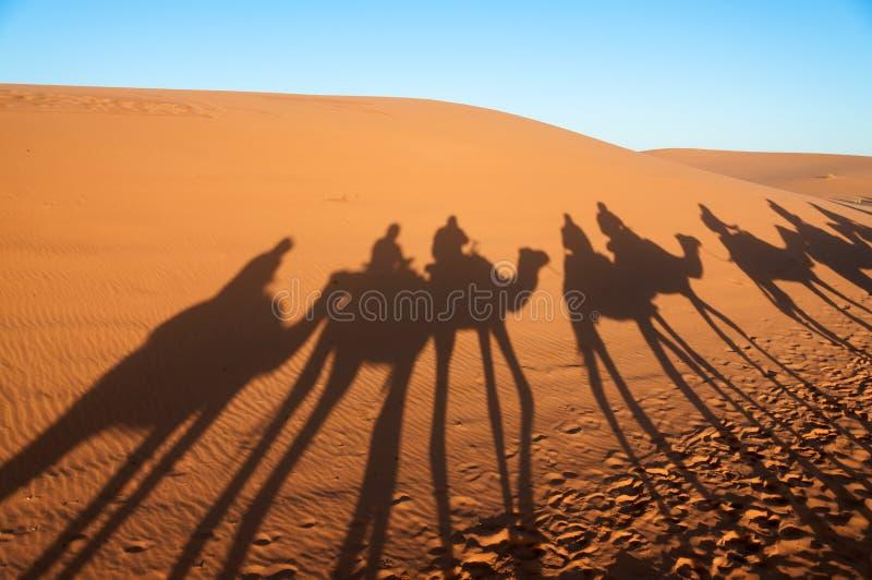 Caravan con i turisti nel deserto del Sahara fotografia stock libera da diritti