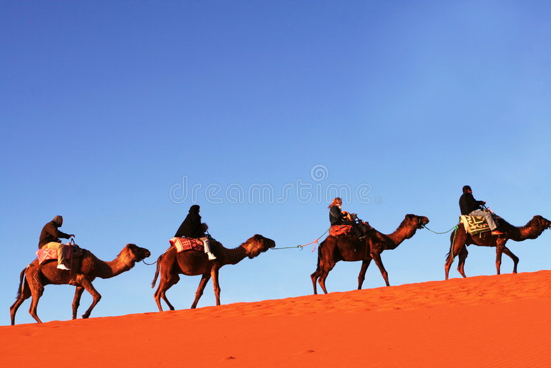 Caravan in de woestijn stock foto