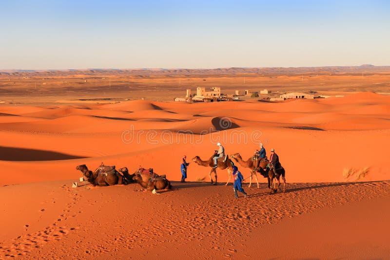 Caravan dei cammelli, Sahara Desert, Marocco immagine stock libera da diritti