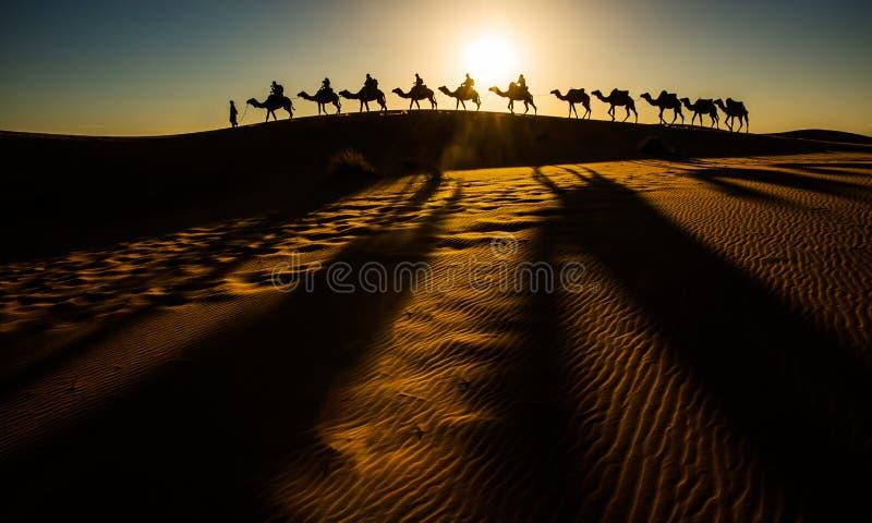 Caravan del cammello immagini stock