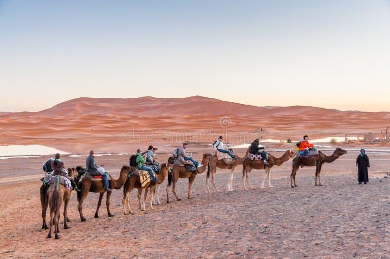 Caravan del cammello al deserto del Sahara fotografie stock libere da diritti