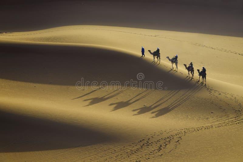 Caravan del cammello nel deserto della sabbia fotografie stock