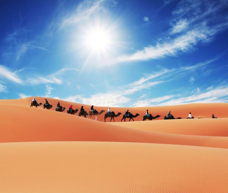 Caravan in desert. Caravan in the Sahara desert royalty free stock photography