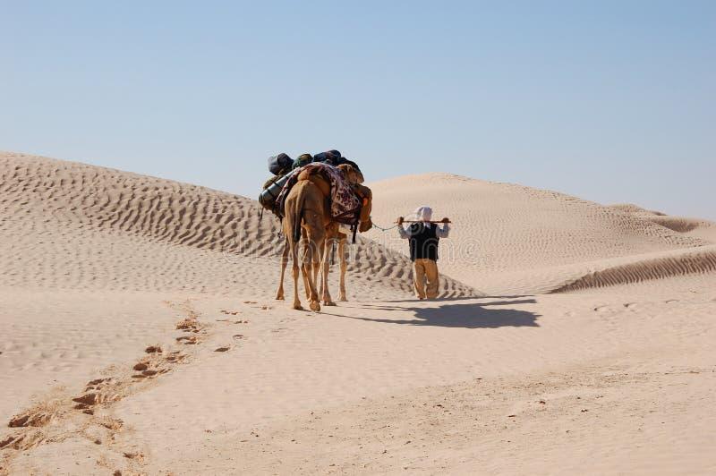 Download Caravan in desert Sahara stock image. Image of sahara - 2940941