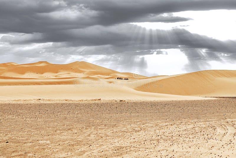 Caravan die door de zandduinen gaan in Sahara Desert royalty-vrije stock afbeelding