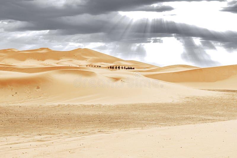 Caravan die door de zandduinen gaan in Sahara Desert stock foto